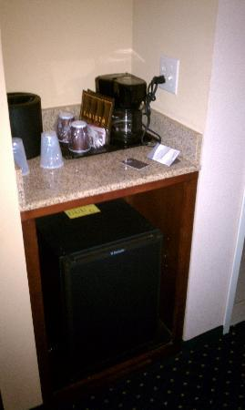 Courtyard by Marriott Pensacola Downtown: Mini Fridge