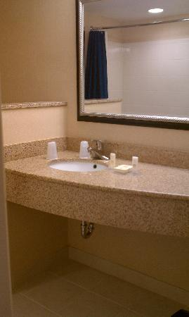 Courtyard by Marriott Pensacola Downtown: Bathroom Sink