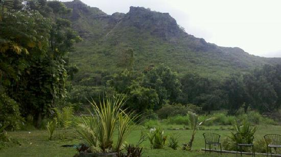 Tropic'Aina: portain of the view from the patio