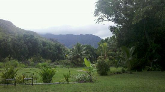 Tropic'Aina: portain of the view of mountains from patio