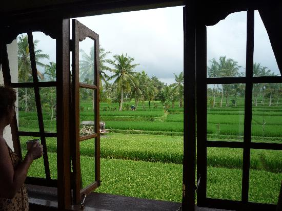 Sawah Sunrise Bed & Breakfast: View from top floor