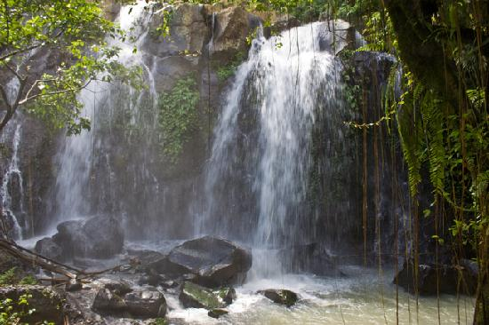 Bali Eco Stay Bungalows: Waterfall which runs our hydro system