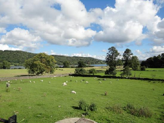 Howe Farm Bed & Breakfast: Looking from Howe Farm Towards Esthwaite