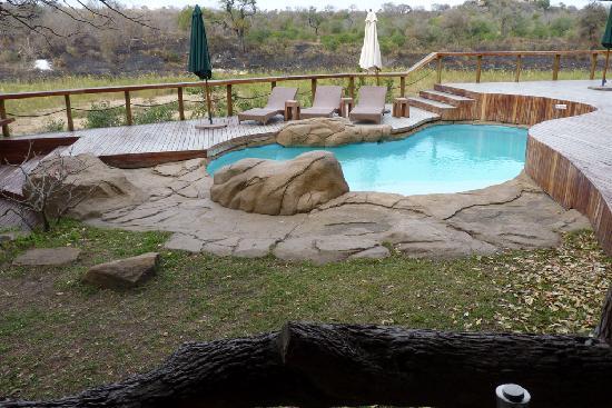 Jock Safari Lodge: Swimming pool next to the lounge
