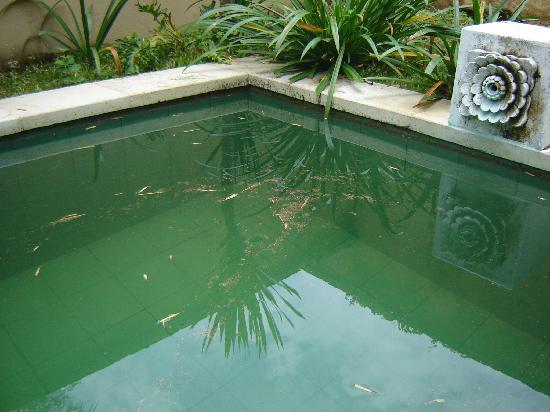 Mimosa Jimbaran Bali Villa: piscine individuelle sale