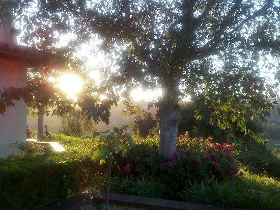 The Casitas of Arroyo Grande: Sun peaking out from our private coutyard.