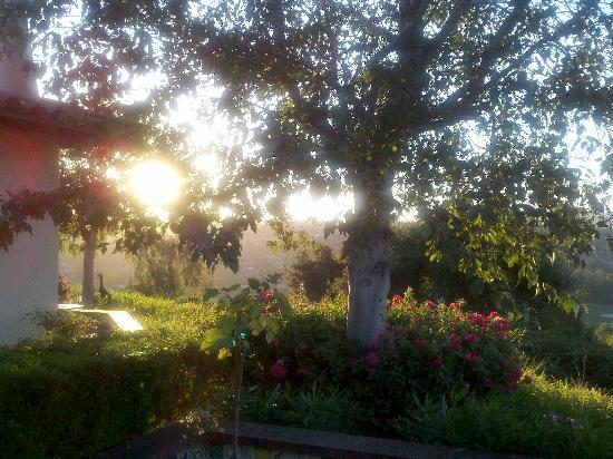 ذا كاسيتاس أو أرويو جراندي: Sun peaking out from our private coutyard.