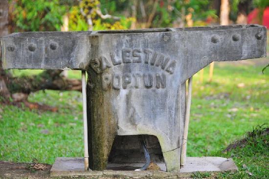 Poptun, Guatemala: finca ixobel
