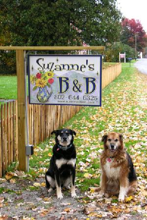 Suzanne's B&B: Pets and children are always welcome!