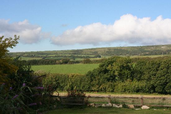 Castle View: Sunny view over Brenscombe Hill