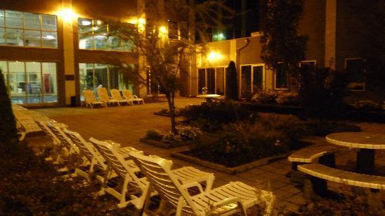 Hotel & Suites Le Dauphin Drummondville: Aire de détente - Piscine