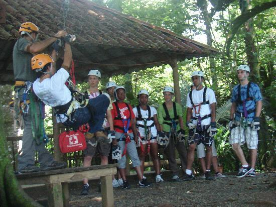 Puerto Limon, Costa Rica : Rutgers University Students-Zip Lining 1