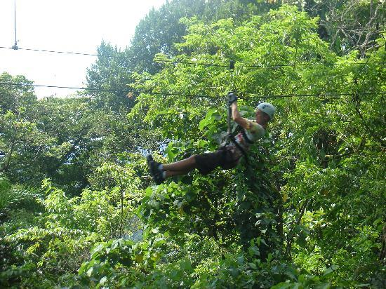 Puerto Limon, Costa Rica : Rutgers University Students-Zip Lining3
