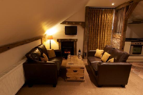 Haye Pastures Farm : The lounge in one of our self catering apartments
