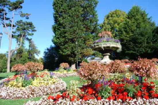 Albany Guest House: Walk through the gardens to town