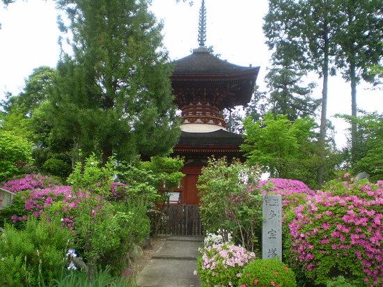 Kashihara, Japonya: 多宝塔