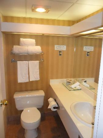 Executive Airport Plaza Hotel & Conference Centre Richmond: Bathroom