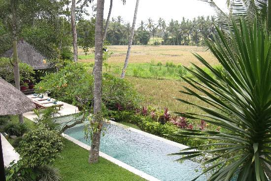 Villa Pantulan: View from our room