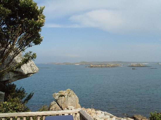 Sea Garden Cottages: The view from our room (38)
