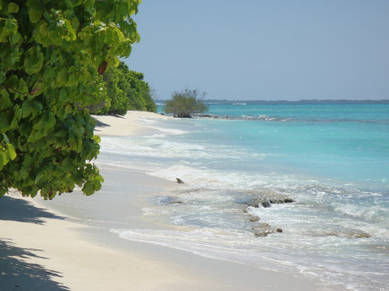 Alidhoo Island: Desert Island.