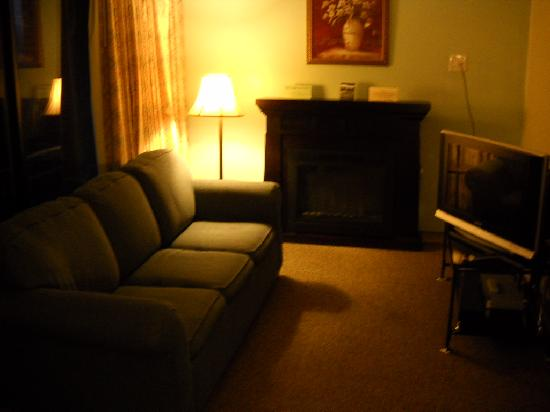 Ansted, WV: Sitting Area- Couch and Fireplace