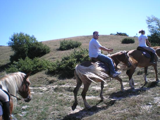 Agriturismo Bartoli: Horse back riding