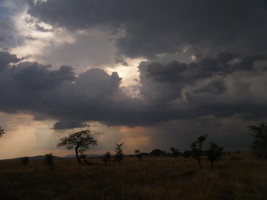 Serengeti Medium Camp: view from tent