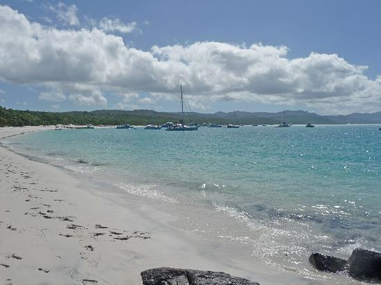 Whitehaven Beach : Many tour and holiday boats come to the beach