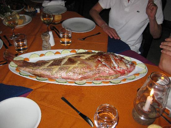 Chapwani Private Island: great food !