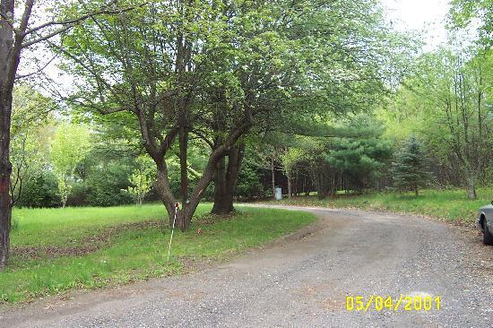 Lena's Lodge: Driveway