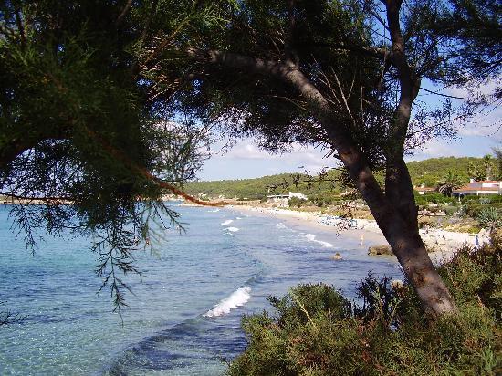 Sol Beach House Menorca : beautiful beach