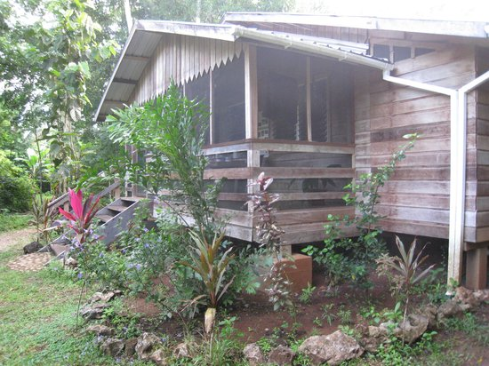 Moonracer Farm Lodging & Tours: Porch overlooking jungle.