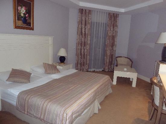 Hotel Samara: La chambre