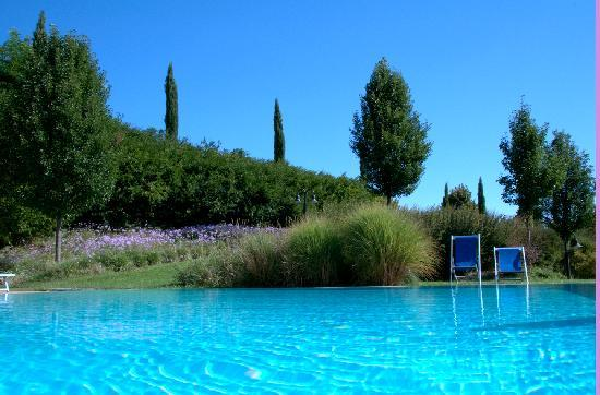 Hotel Villa Ducci: in the pool :)