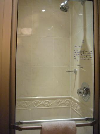 Diplomat Hotel: Eaton room (ground floor) bathroom