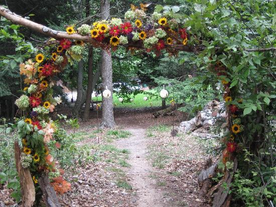 Grand Haven, MI: Walkway to wedding in woods