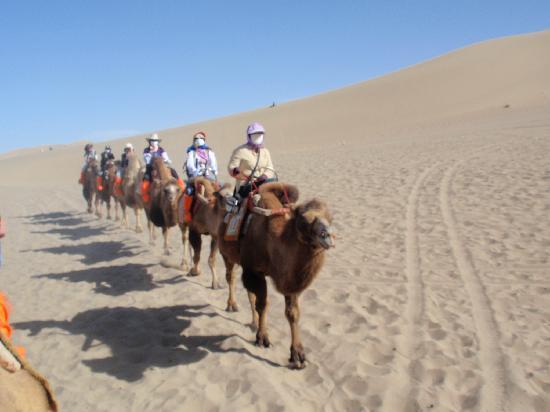 Mingsha Shan (Echo Sand Mountain) Park, Dunhuang, China : 隊列を組んで登ります