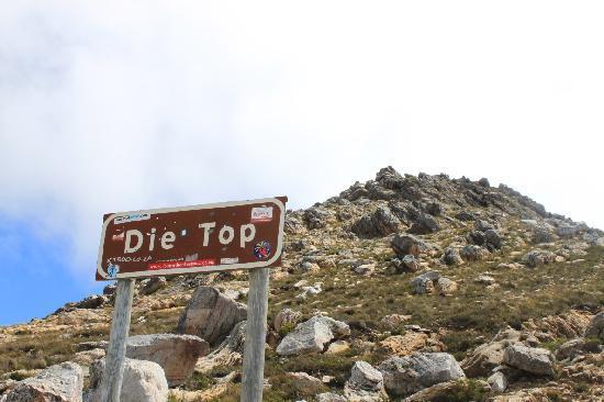Swartberg Pass: The summit
