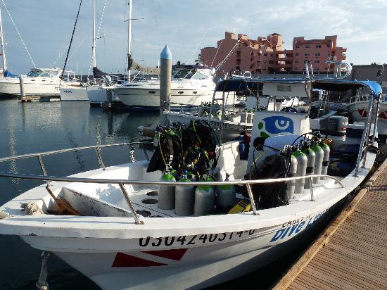 Buceo Carey: Un des bateaux au port