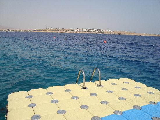 Stella Di Mare Beach Hotel & Spa: Pontoon for snorkelling