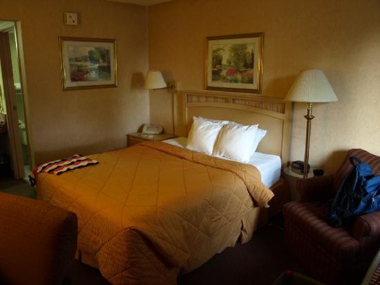 Quality Inn: Zimmer im Comfort Inn