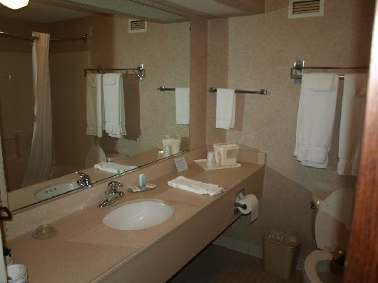 Comfort Inn Aikens Center: Zimmer im Comfort Inn