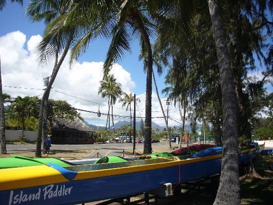Kailua, Hawái: ビーチの駐車場からの景色です