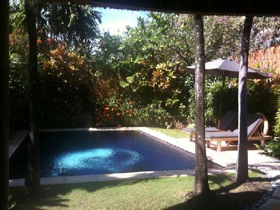 The Villas Bali Hotel & Spa: Pool and Garden!