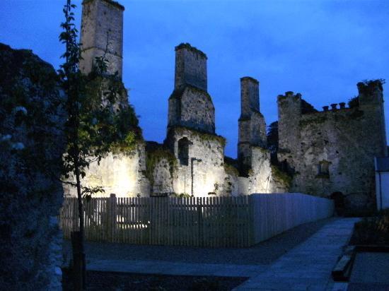 Castlemartyr Resort: Castlemartyer by night