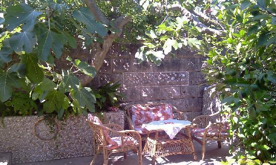 Villa Andro apartments: Under the fig tree