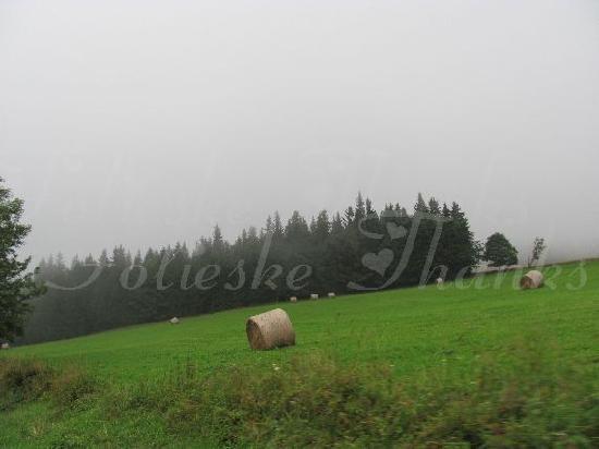 Susice Czech Republic  city pictures gallery : Susice, Czech Republic: Great nature surrounding Sušice