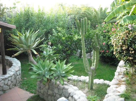 Baia del Sole Resort: un angolo del parco