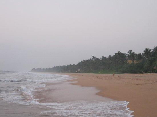 Bentota, Sri Lanka: mist