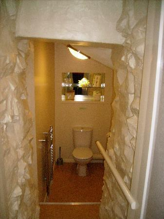 Aynsome Manor Hotel: The batcave loo""